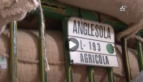 Ara Lleida Tour als Tres Tombs d'Anglesola