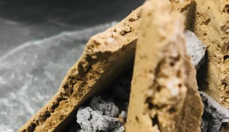 Al·lèrgies i intoleràncies alimentàries