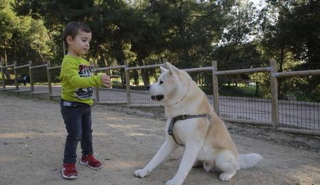 Un nen jugava ahir amb el seu gos al parc de Santa Cecília de Lleida.