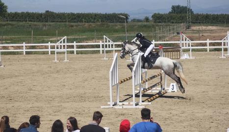 La demostració de salts va ser una de les activitats que es van portar a terme a EquiMollerussa.