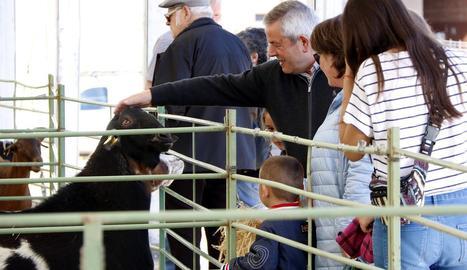 Una imatge del certamen ramader de la capital del Solsonès.