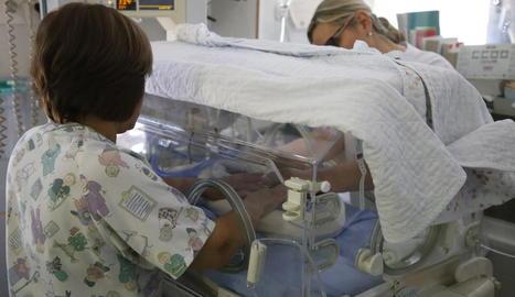 Imatge d'arxiu de l'incubador per a nounats a l'hospital Arnau de Vilanova de Lleida.