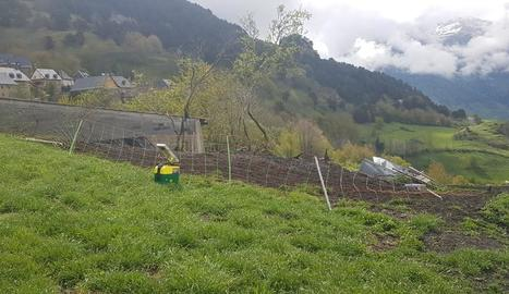 El pastor elèctric enderrocat i la granja, propera a habitatges.