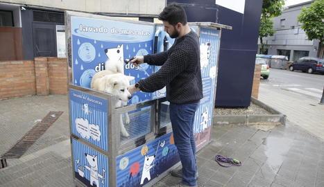 Un veí renta el seu gos al nou rentador de mascotes de Balàfia.