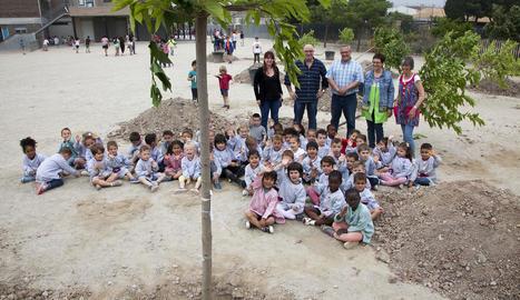 Escolars de Tàrrega van plantar ahir dotze moreres.