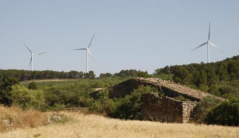 La zona on aniran els nous molins alineats amb els del parc de Sant Antoni, a la imatge.