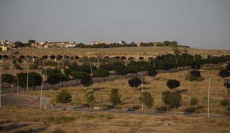Vista de part dels terrenys de Torre Salses, amb Magraners al fons.