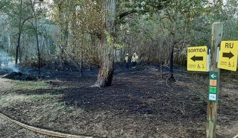 El foc va calcinar 400 metres quadrats de bosc de ribera.