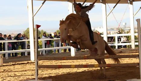 exit de participació. Més de 70 ramaderies van viatjar fins a Mollerussa per mostrar els seus millors exemplars.