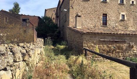 Imatge del carrer Major del nucli cobert totalment per males herbes i brossa.