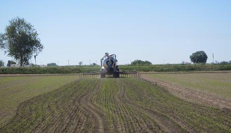 Treballs de fertilització