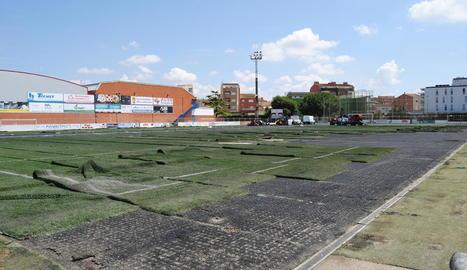 Imatge de la renovació de la gespa al camp de futbol de Mollerussa.