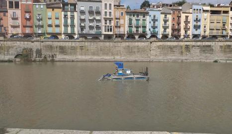 Balaguer retira les algues del riu per a la celebració de la Transsegre