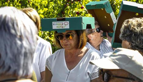 Els trenta turistes que van participar ahir en la ruta d'Aitona en Fruita van poder recollir nectarines i emportar-se-les a casa.
