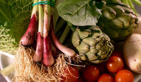 Les hortalisses són riques en aigua, fibra i nutrients i baixes en calories.