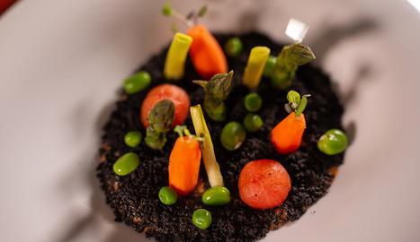 Un plat visualment molt bonic i molt saludable cuinat amb hortalisses de l'Horta de Lleida.