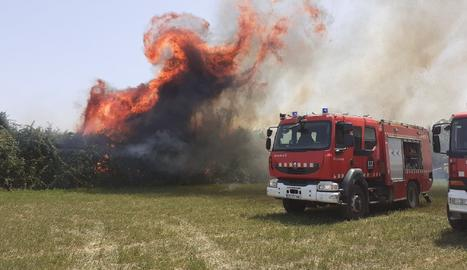 Els Bombers de la Generalitat alerten que el risc d'incendi forestal continua molt alt