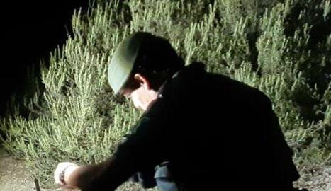 Arma decomissada al caçador denunciat pels Agents Rurals.