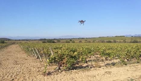 Eurecat vol millorar la producció agroalimentària amb la introducció de tecnologia robòtica