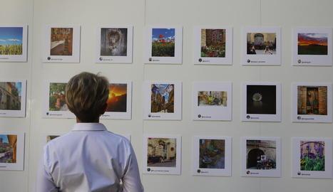 Exposició del concurs d'Instagram Les Garrigues en Flor, a l'IEI