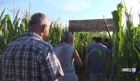 El Laberint de Blat de Moro de Castellserà, un punt turístic de referència a l'Urgell