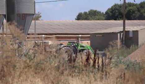 Vista de la granja on ahir va tenir lloc l'atropellament mortal a Bellvís.