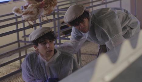 Javier Calvo i Javier Ambrossi es convertiran en grangers.