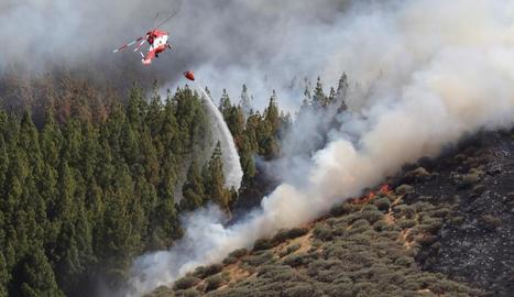 Un incendi forestal a Gran Canària arrasa ja gairebé mil hectàrees
