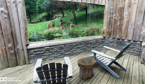 Una habitació a França on observar els llops, una cosa que vol incorporar Aran Park.