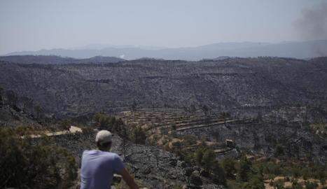 Un veí de Llardecans contempla les conseqüències del gran incendi de la Ribera d'Ebre i Ponent.