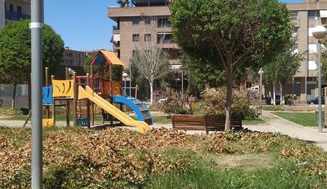 Imatge de la vegetació seca a la plaça Clara de Campoamor.