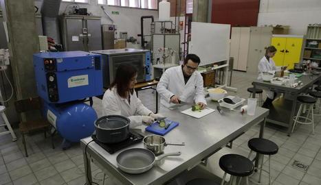 Imatge d'arxiu d'investigadors al laboratori de Tecnologia dels Aliments d'Agrònoms.