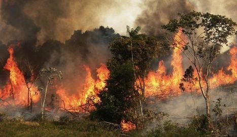 Un dels milers d'incendis actius i fora de control a l'Amazònia brasilera.