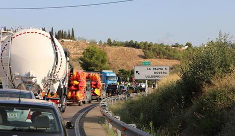 L'alcalde de Bovera donant nectarines a un conductor.