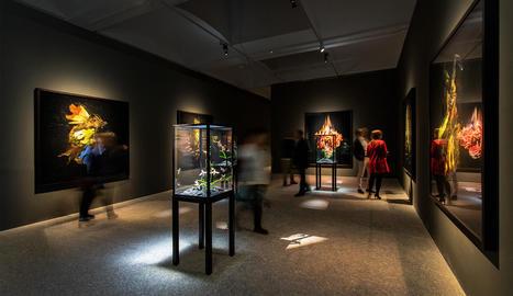 A l'esquerra, exposició de Mat Collishaw a la primavera a Madrid. A la dreta, 'The End of Innocence', de la col·lecció de la Fundació Sorigué.