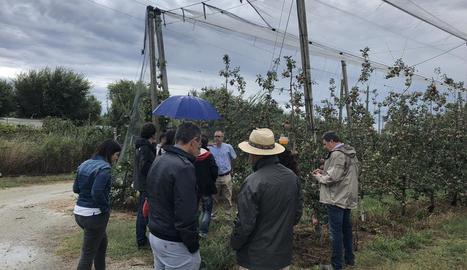 Un moment de la visita efectuada dimarts a finques de poma de Girona.