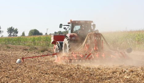 Imatge d'un tractor en un camp de cereal a Gimenells.