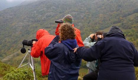 Turistes observant els primers cérvols.