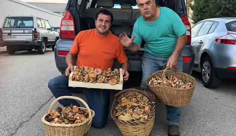 Joan Mora i Manel Muñoz mostren els bolets trobats ahir.