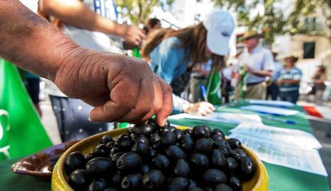 L'oliva negra va ser la primera víctima dels aranzels.