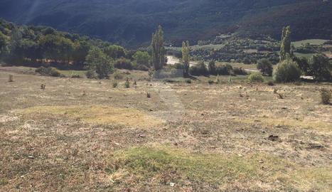El Pirineu ha perdut un 20% de capacitat econòmica per culpa de la sequera