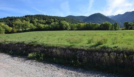 La zona de Bellver de Cerdanya on es construirà el centre de recuperació de cavalls.