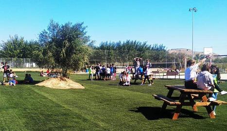 La gespa del camp de futbol que s'ha reutilitzat a la zona verda de l'Institut d'Alpicat.