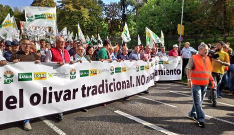 Un moment de la manifestació del sector oliverer de tot l'Estat pels carrers de Madrid.