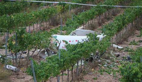 Les restes de l'avioneta es van trobar en una vinya a 90 quilòmetres de l'aeroport d'enlairament.