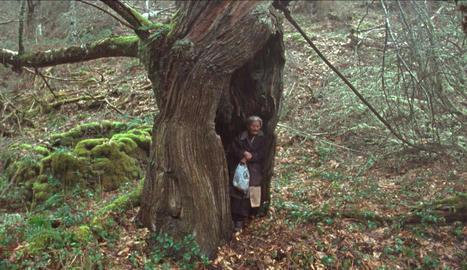 El cor del bosc