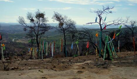 lily brik. Llenç plàstic pintat amb esprais acrílics sobre un fons transparent que deixa veure la desolació de l'entorn.