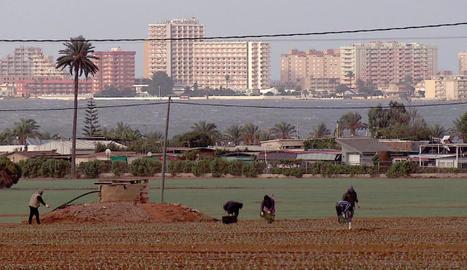 Agricultura i construcció pressionen enormement el Mar Menor.