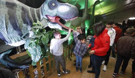 El tiranosaure rex és l'estrella de l'exposició, que estarà disponible fins al 17 de novembre.