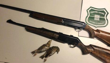 Algunes armes decomissades a les Garrigues.